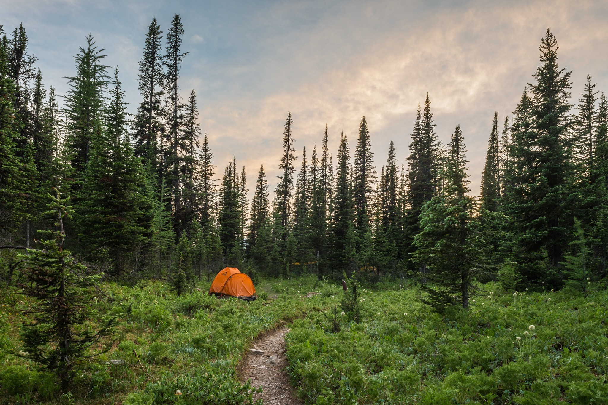 camping-wallpaper-7